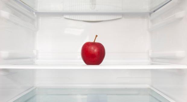 54ff884988343-apple-fridge-orig-master-1